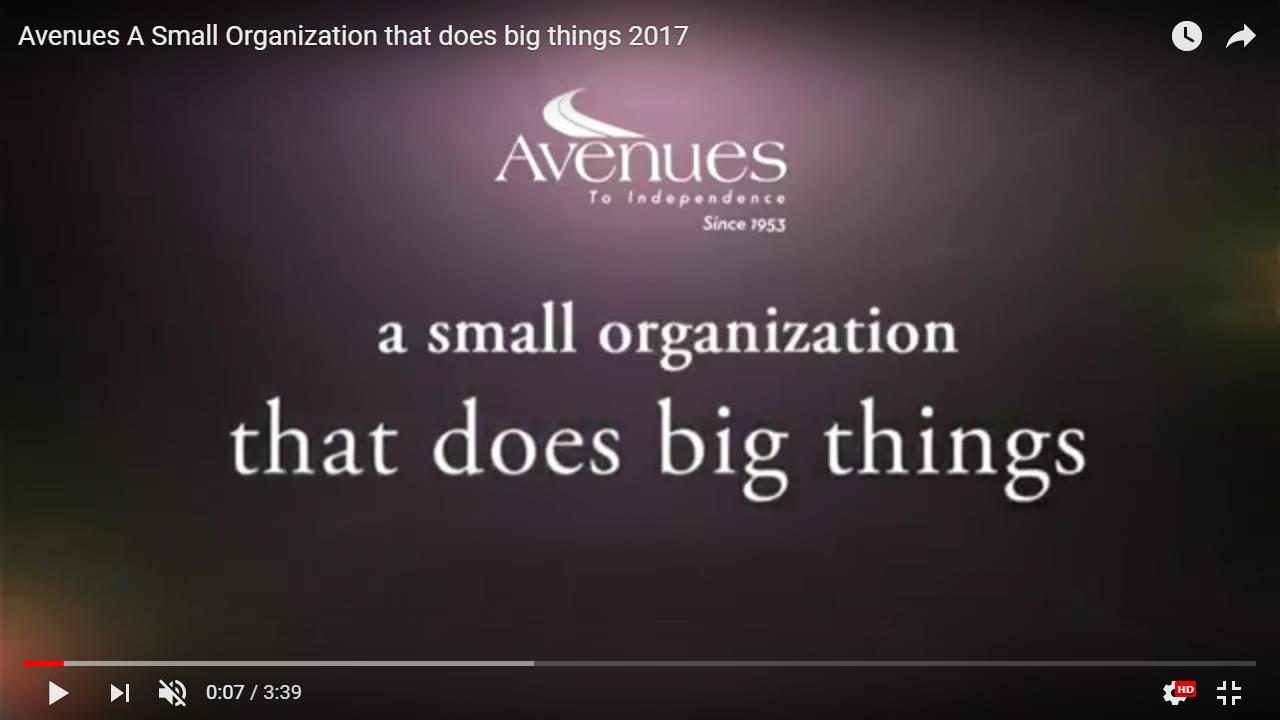 Avenues: A Small Organization that does Big Things